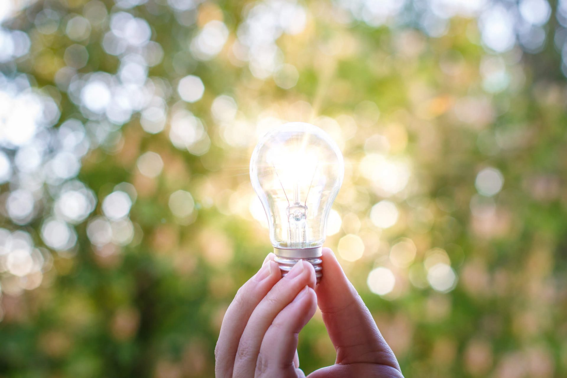 innovation (7)